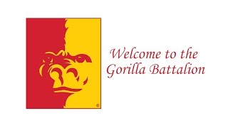 Welcome to the Gorilla Battalion