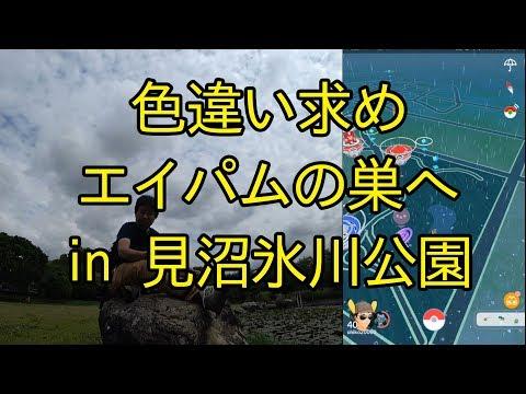 【ポケモンGO】エイパムの巣の見沼氷川公園へ