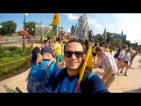 Disney, Orlando, Caribe e Miami - A tour guide memory