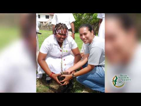 Belize Audobon Society   Who We Are HQ TV