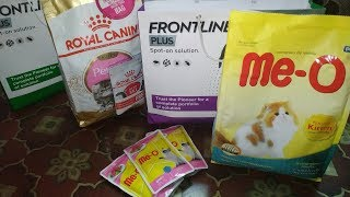 Best Cat/Kitten Food For Persian Cats..Feeding Cat Food For Healthy Growth..