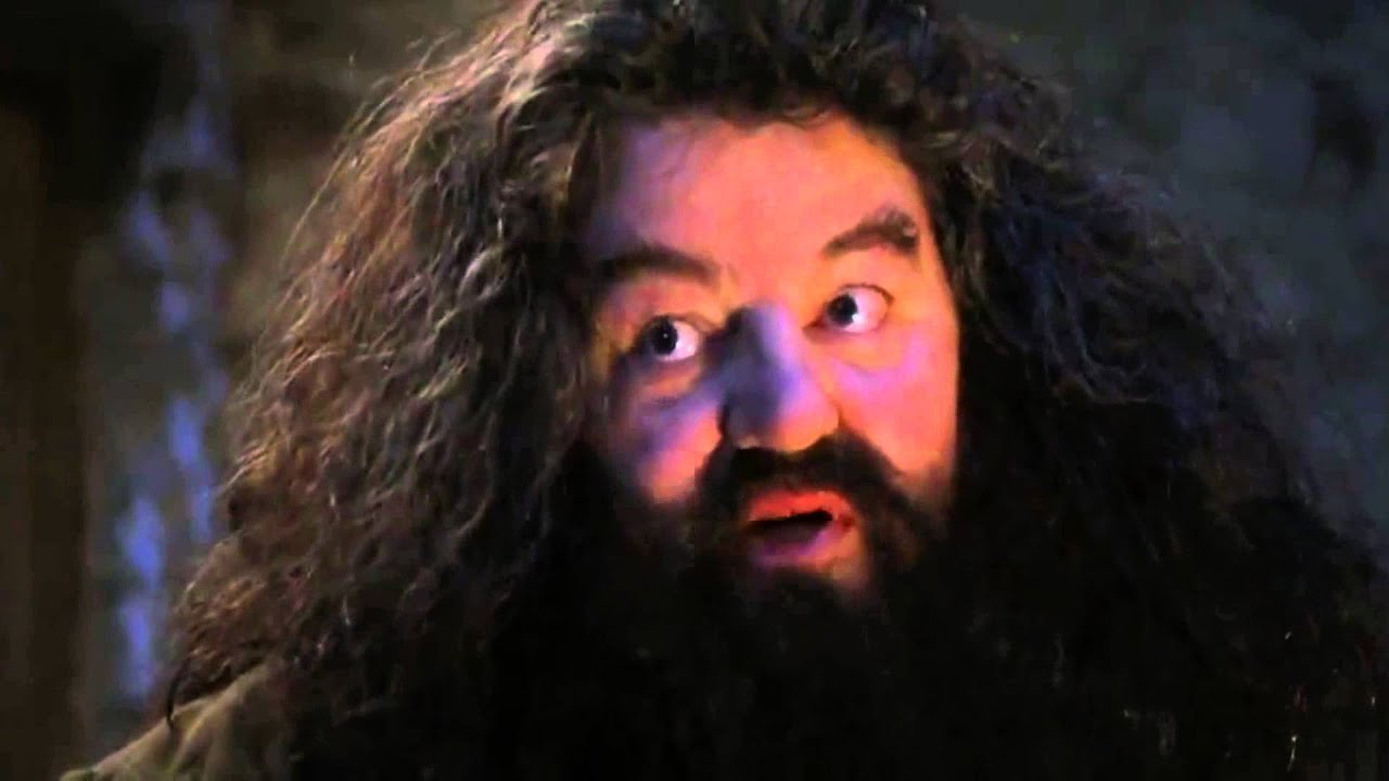 hagred you re a wizard harry youtube