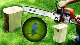 Chainsaw + Log = Bluebird House