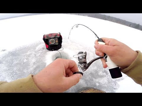 LIVE BAIT Vs ARTIFICIAL LURE Ice Fishing CHALLENGE!!!