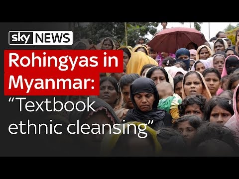 "Rohingyas in Myanmar: ""Textbook example of ethnic cleansing"""