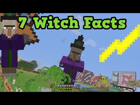 Minecraft 7 Things You Didn't Know About Witches!