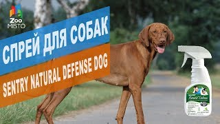 Спрей для собак Sentry Natural Defense Dog  | Обзор спрея для собак Sentry Natural Defense Dog