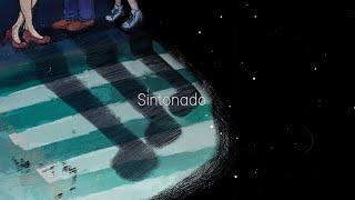 SINTONADO Official Lyric Video | AIM