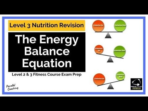 The Energy Balance Equation: Level 3 Nutrition Revision