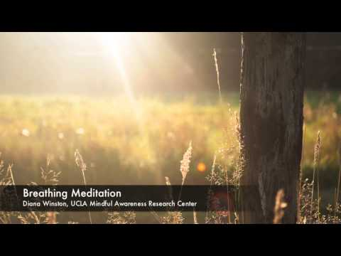 Breathing Meditation | UCLA Mindful Awareness Research Cente