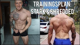 STARK & SHREDDED - TRAININGSPLAN SCHMALE SCHULTER