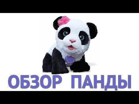 Обзор на Панду PomPom Panda очаровательная и интерактивная от  FurReal Friends и мини конкурс
