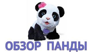 видео игрушка панда