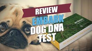 Embark Dog DNA Test Review (2018) thumbnail