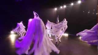 Revue Cabaret Divines Fantaisies - DIVINE - Video Présentation