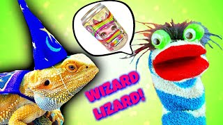 Wizard Lizard Gives Fizzy Magical Llama Poopsie Power