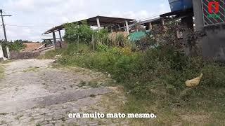 https://www.youtube.com/embed/YFaFzP-7Sa8