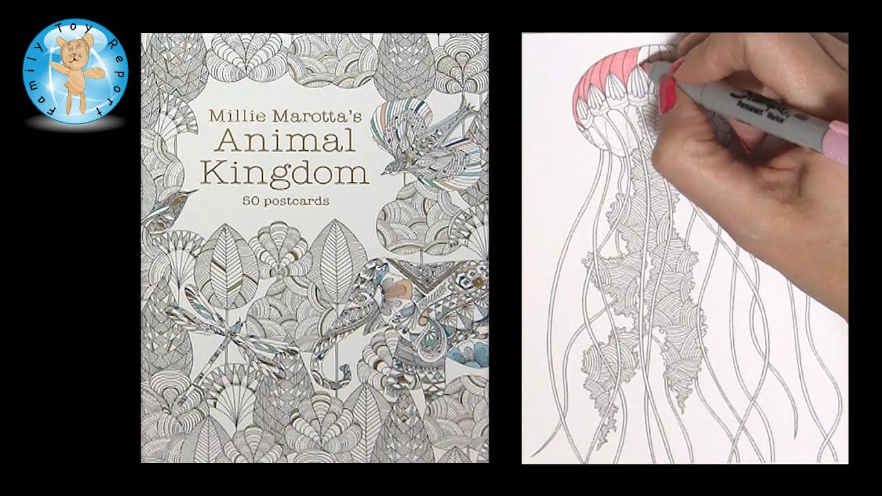 Millie Marottas Animal Kingdom 50 Postcards Adult Coloring Book Jellyfish