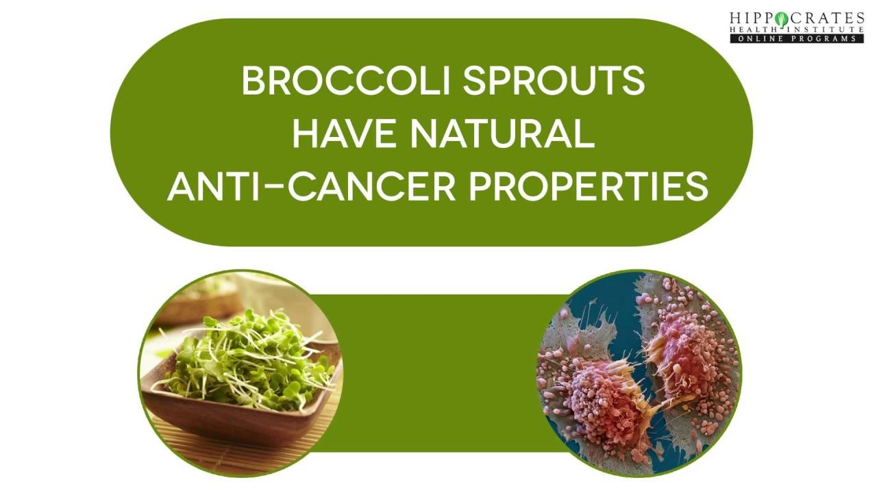 The Benefits of Broccoli Sprouts