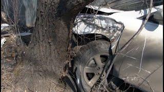 Из-за раздавленной на дороге кошки произошла авария в Хабаровске.MestoproTV