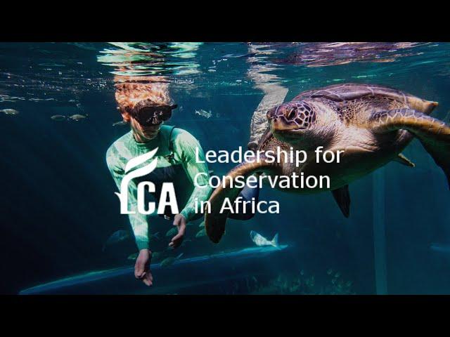 Two Oceans Aquarium Education Foundation Turtle Rescue Programme