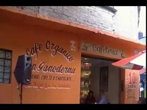 """VISITA A LA CAFETERIA """"TU CAFE CON EDU"""" (MEXICO, D.F.) DXN MONTERREY LIDERES DEL GANODERMA"""