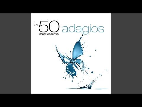 Symphony No. 4 in B-Flat Major, Op. 60: II. Adagio