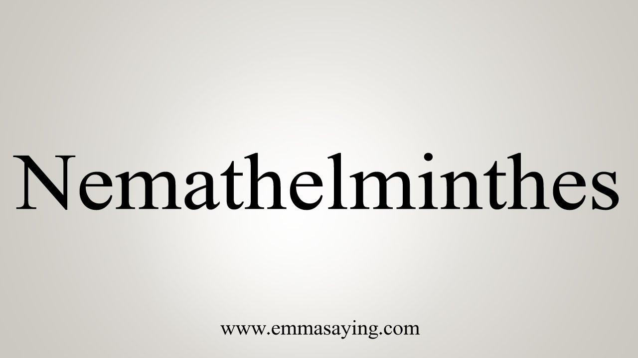 substanță nemathelminthes ppt)