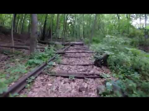 ⁴ᴷ Exploring Abandoned NYC LIRR Rockaway Beach Branch near Forest Park, Queens