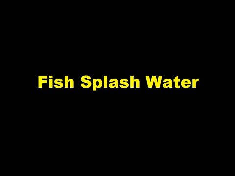 Fish Splash Water -  Sound Effect