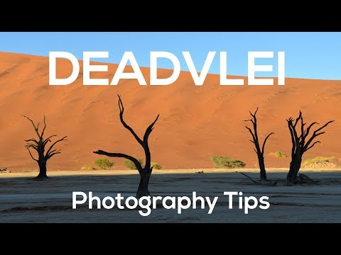 Deadvlei Photography Tips | Namibia