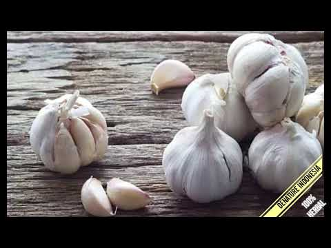 sipilis-menahun-|-obat-alami-bawang-putih