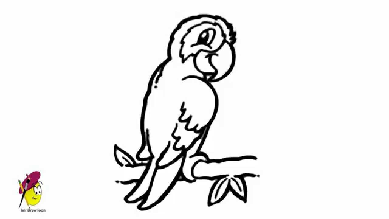 parrot birds and animals easy drawing how to draw a parrot