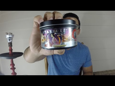 Starbuzz Tobacco: Asian Persuasion Review (2015)