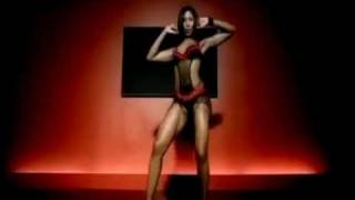 Pitbull Ft. T-Pain, Sean Paul   Ludacris Shake Senora (Remix).flv