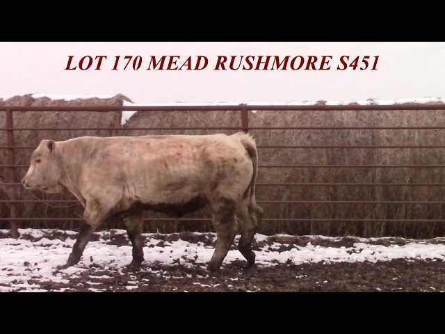 Mead Farms Lot 170