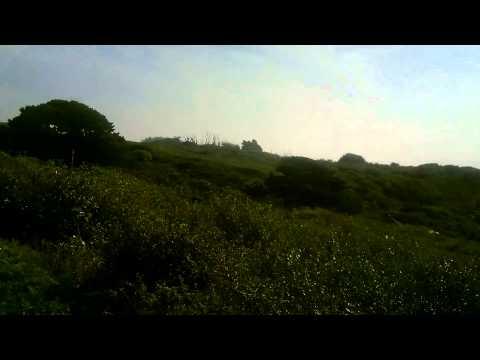 Captain Obvious Walks Around Guernsey St. Martin