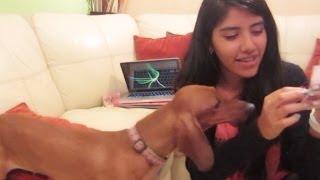 Regalos para Aria y cartas de todo el mundo en nuestro correo | Los Polinesios vlog