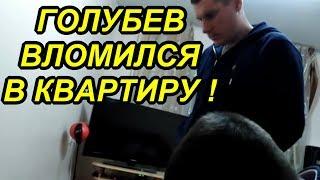 СПИЛИЛИ БОЛГАРКОЙ ДВЕРЬ И УСТРОИЛИ ОБЫСК !!! 05.10.18