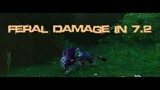 Feral DPS in 7.2