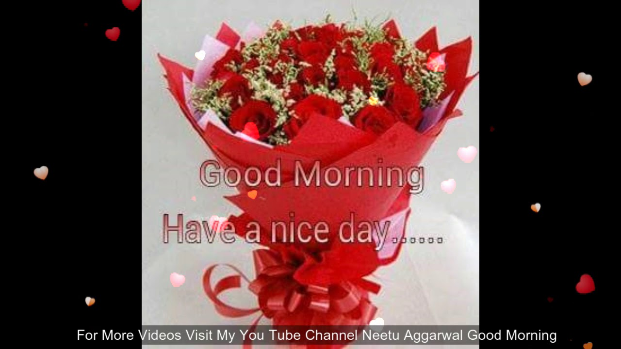 Good Morning Wishes With Beautiful Flowers Youtube