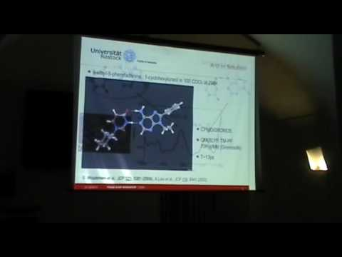 Double Hydrogen Bond Dynamics: From IR Spectroscopy to Laser Control - Oliver K.