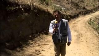 Operación Lince: la captura de El Chayo