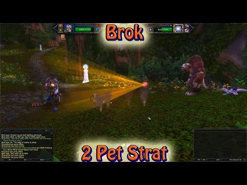 Brok 2 Pet Strategy