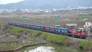 동해행 컨테이너 화물열차 #3094 중앙선 서경주~율동…