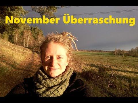 November-Überraschung & Pflanz-Marathon im Gewächshaus