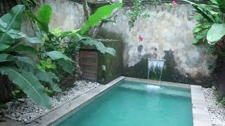 Gambar cover The Airbnb we got in Denpasar