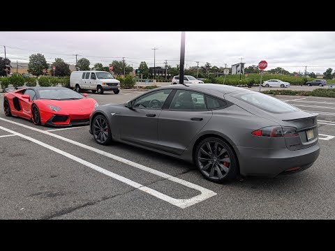 Apollo is Back - My Tesla Repair Process!