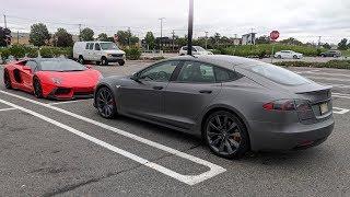 Apollo is Back My Tesla Repair Process!