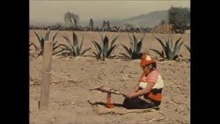 El tejido en curva en México